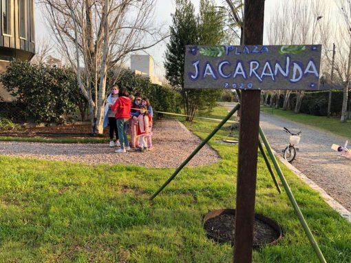 Plazoleta Jacarandá